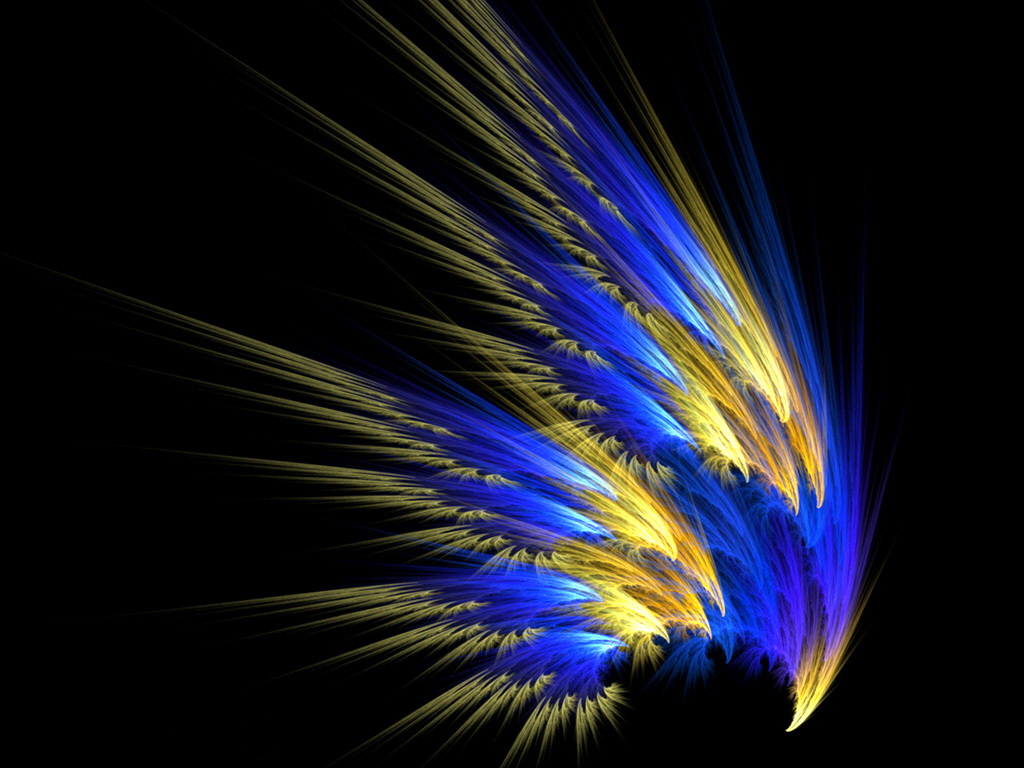 Wallpaper FEATHER Wallpaper   Download The COLORFUL FEATHER 1024x768