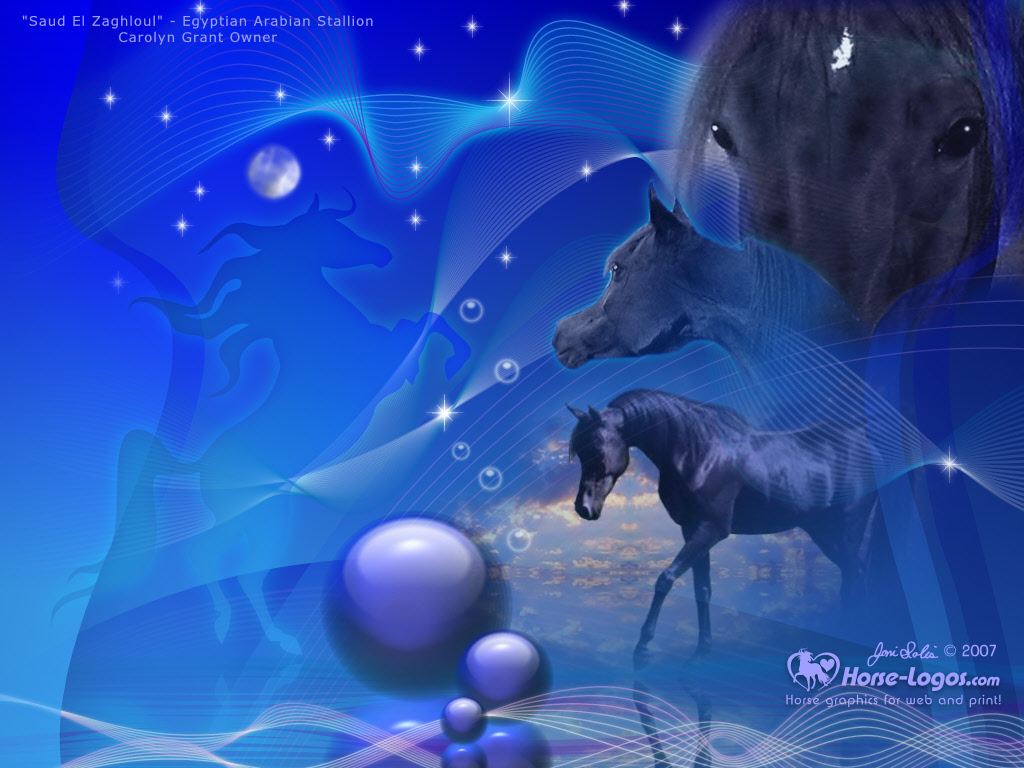 horse desktop wallpaper ALove4Horsescom 1024x768