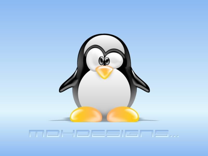 Pin Desktop Wallpaper Penguin Screensavers Download Cake on 800x600
