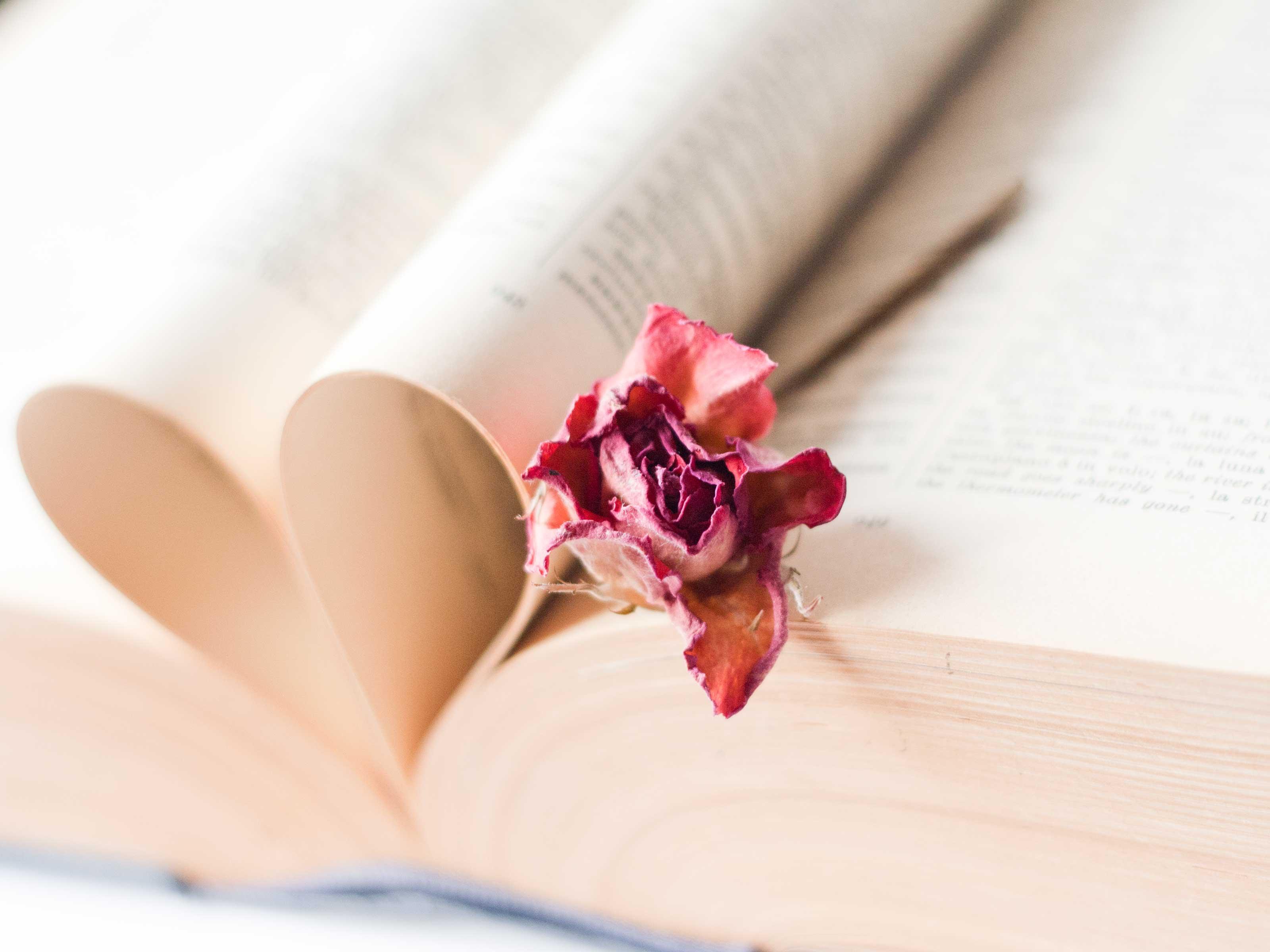 English Literature Background   www.imgkid.com - The Image ...