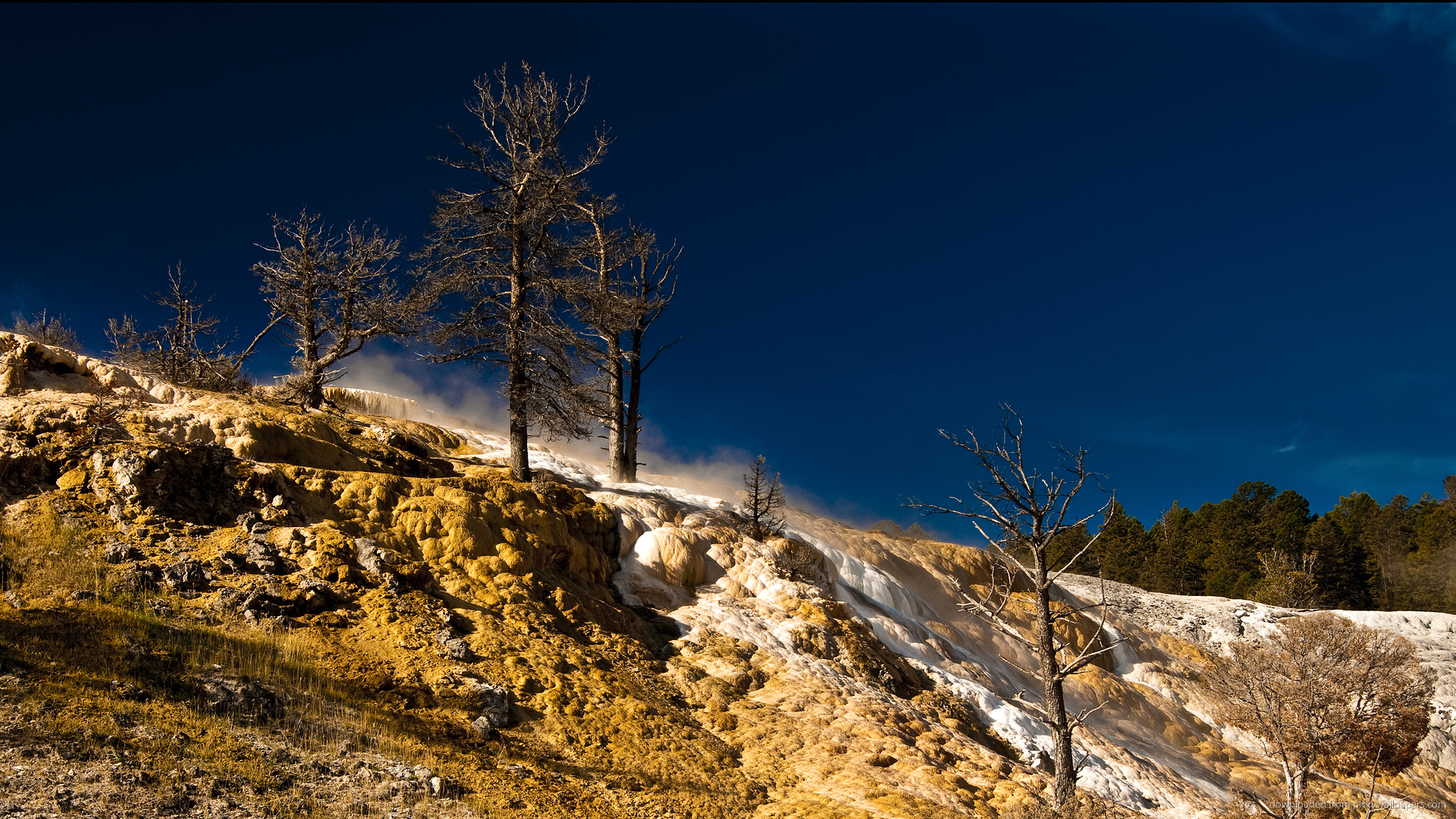yellowstone national park hd - photo #19