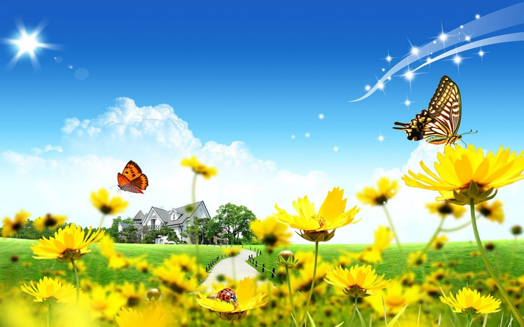 FunMozar Spring Flowers And Butterflies Wallpapers 1024x640