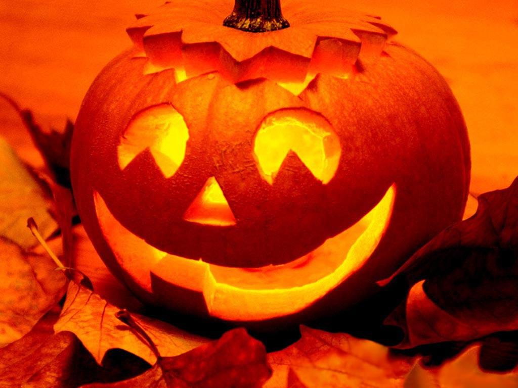 Halloween Wallpapers Screensavers Download Desktop Backgrounds 1024x768