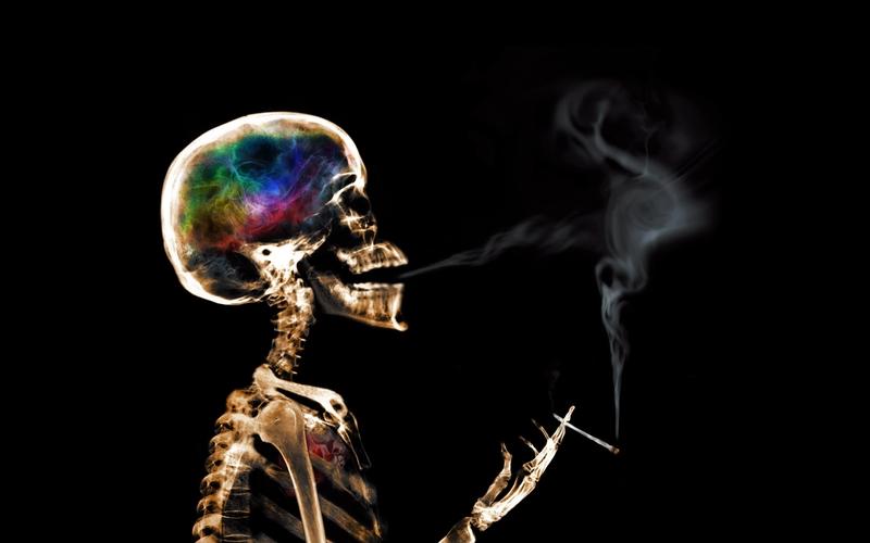 smoking abstract smoke marijuana skeletons xray black background 800x500
