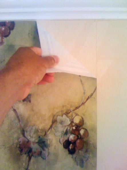 Wallpaper Removal Steps 444x592