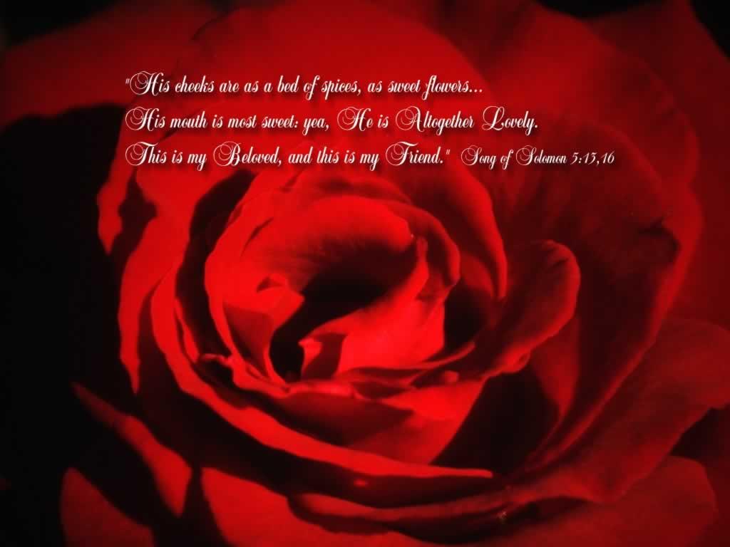 source url http wallpaper4god com en background song of songs 51316 my 1024x768