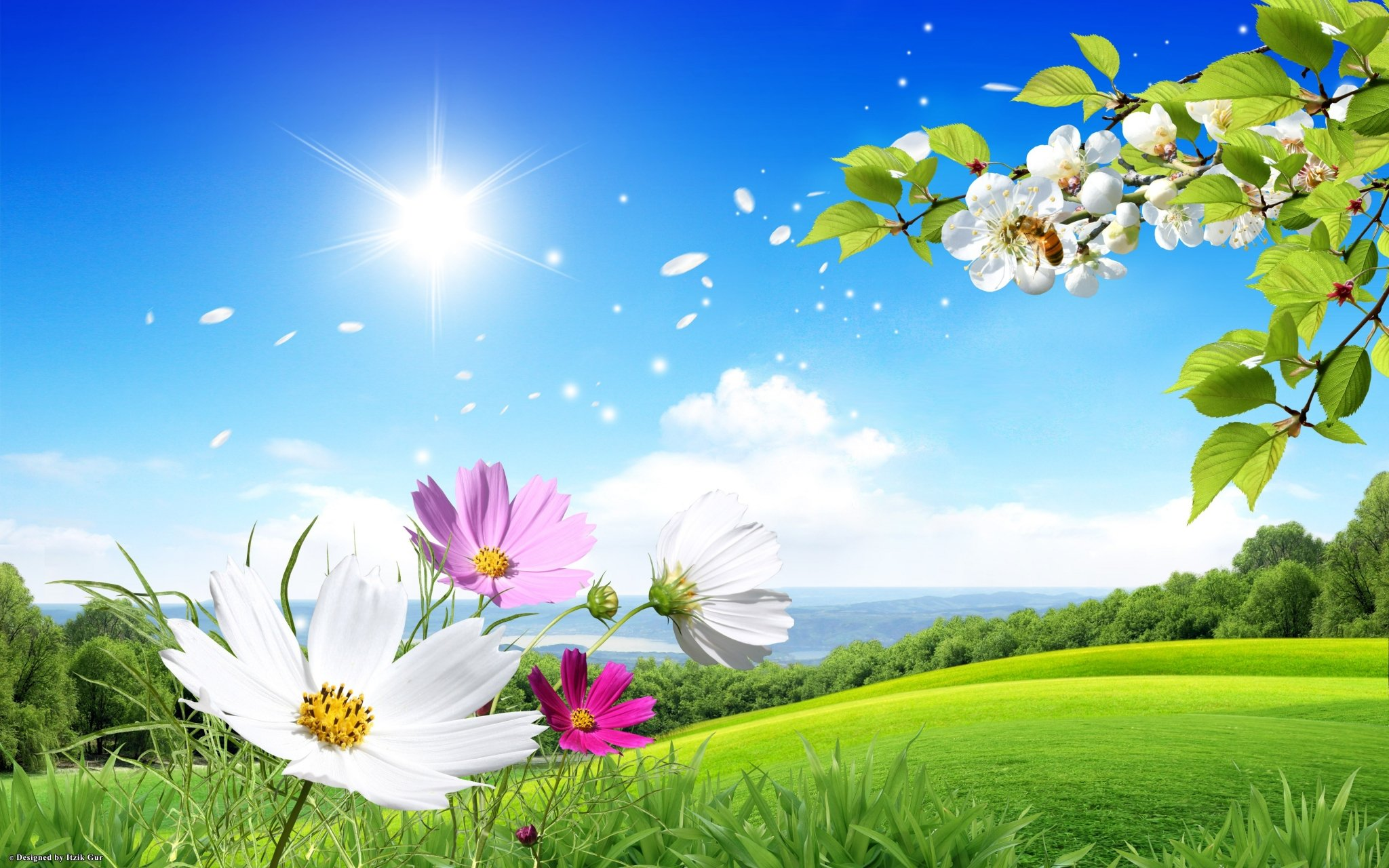Spring Background   Picseriocom 2048x1280