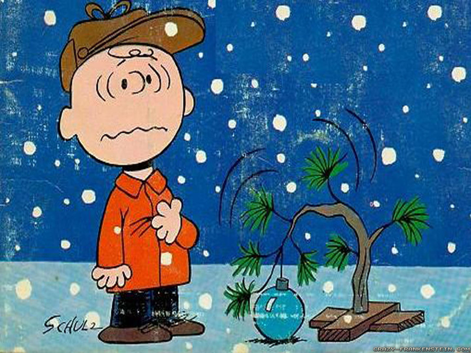 charlie brown christmas tree cartoon wallpapers 1600x1200jpg 1600x1200