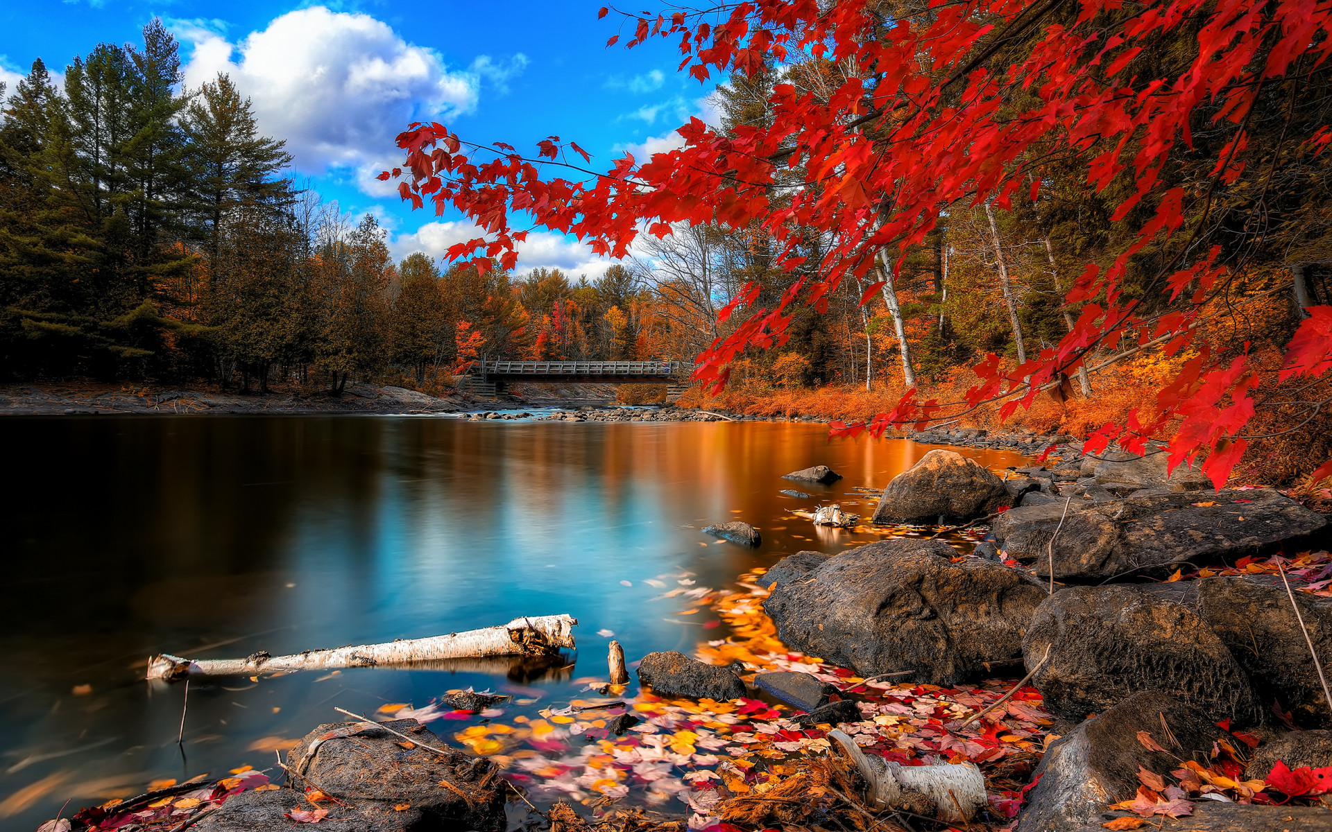 Nature Seasons Autumn Autumn landscape   red leaves 035082 jpg 1920x1200