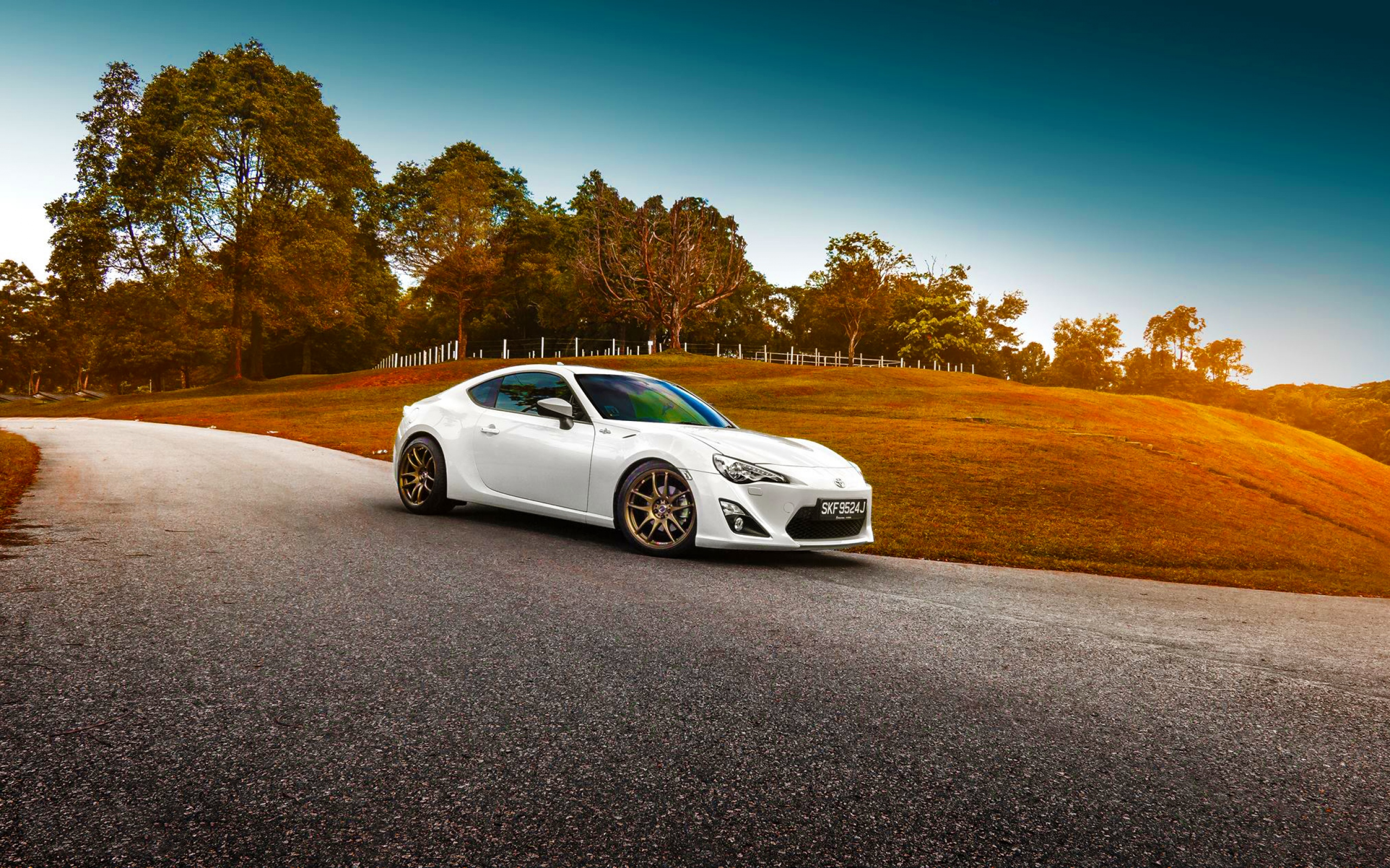 HD Background Toyota GT 86 White Color Grass Sunset Car 2560x1600