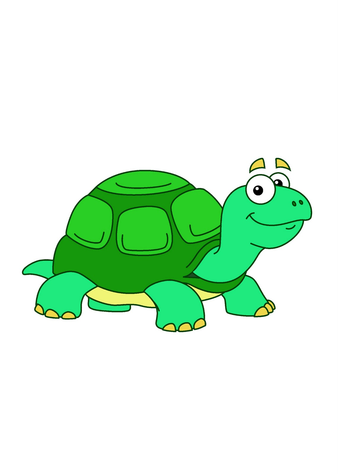 Animated Turtle PC Android iPhone and iPad Wallpapers and Pictures 1142x1600