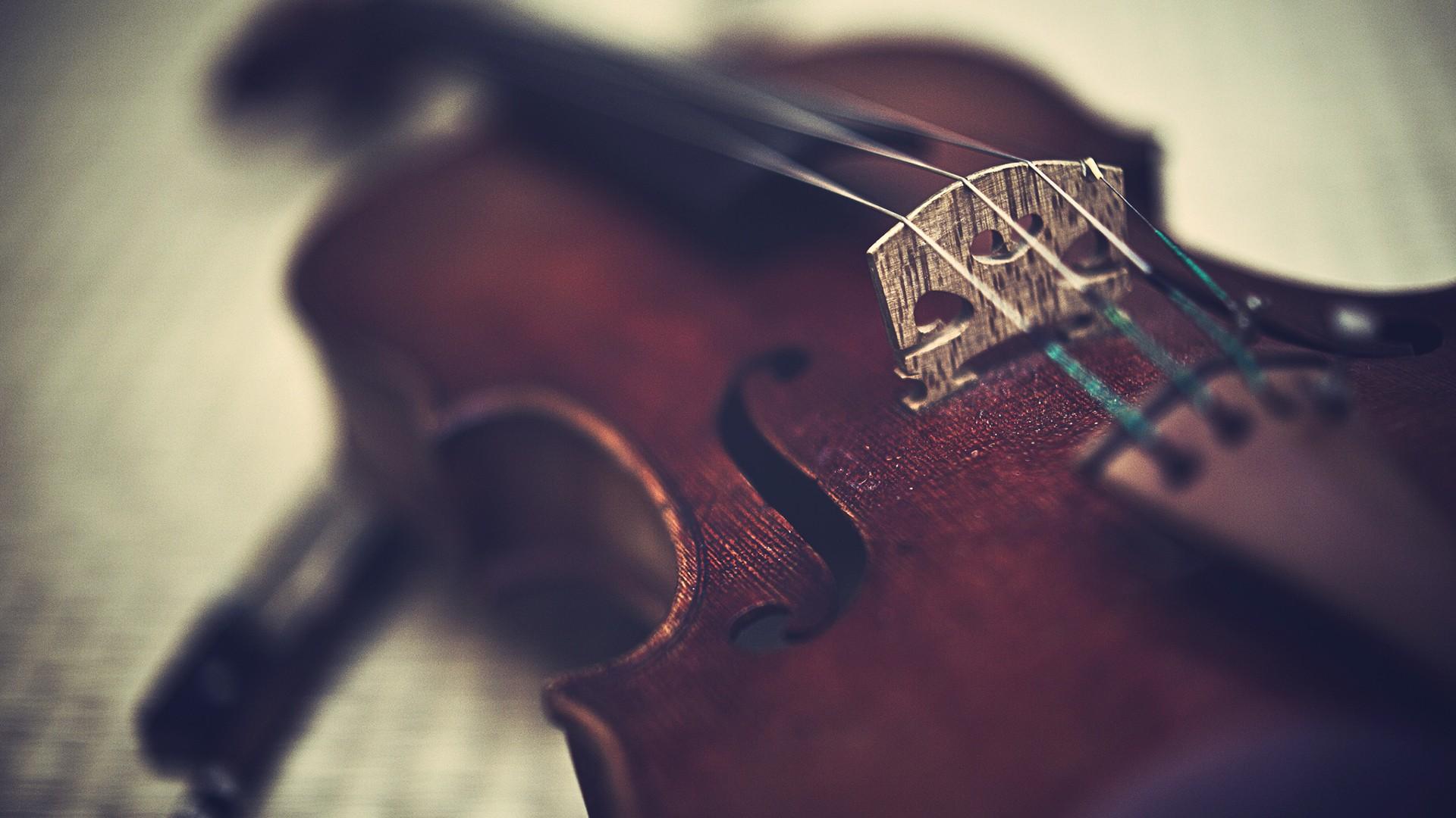 Violin Is An Instrument Wallpaper HD 8715 3135 Wallpaper High 1920x1080