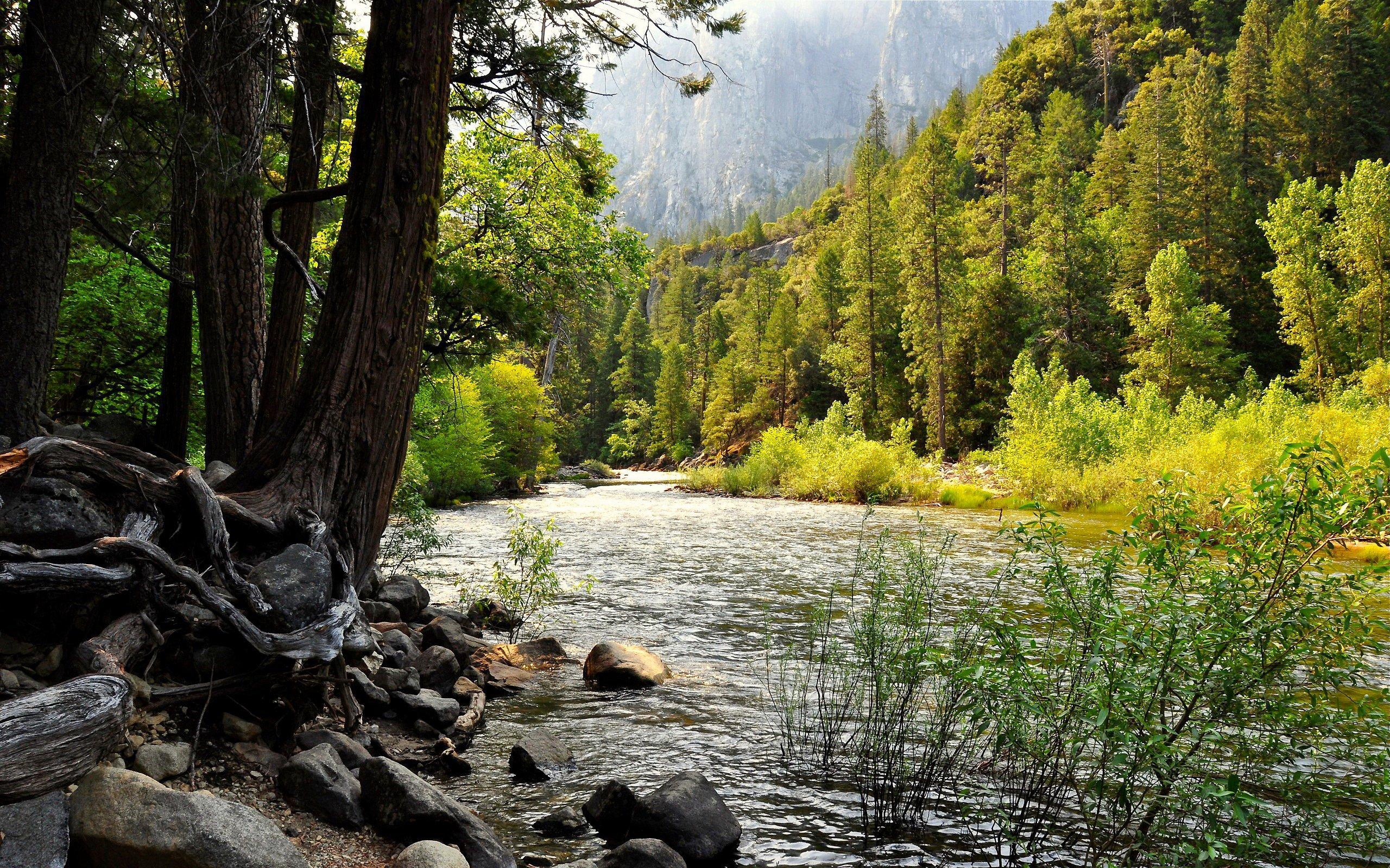 desktop wallpapers Yosemite National Park 2560x1600