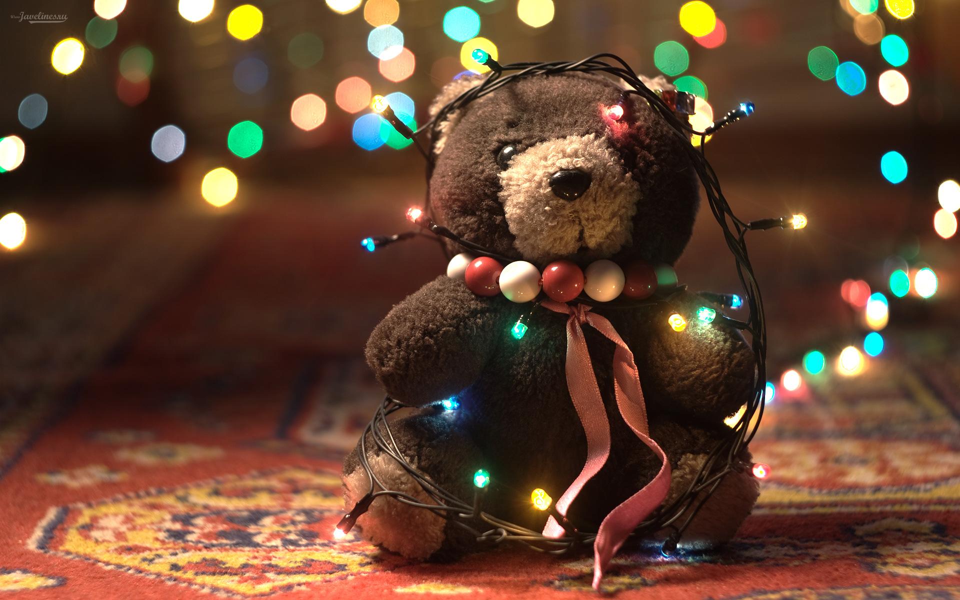 Teddy Bear Hd Wallpaper Wallpapersafari