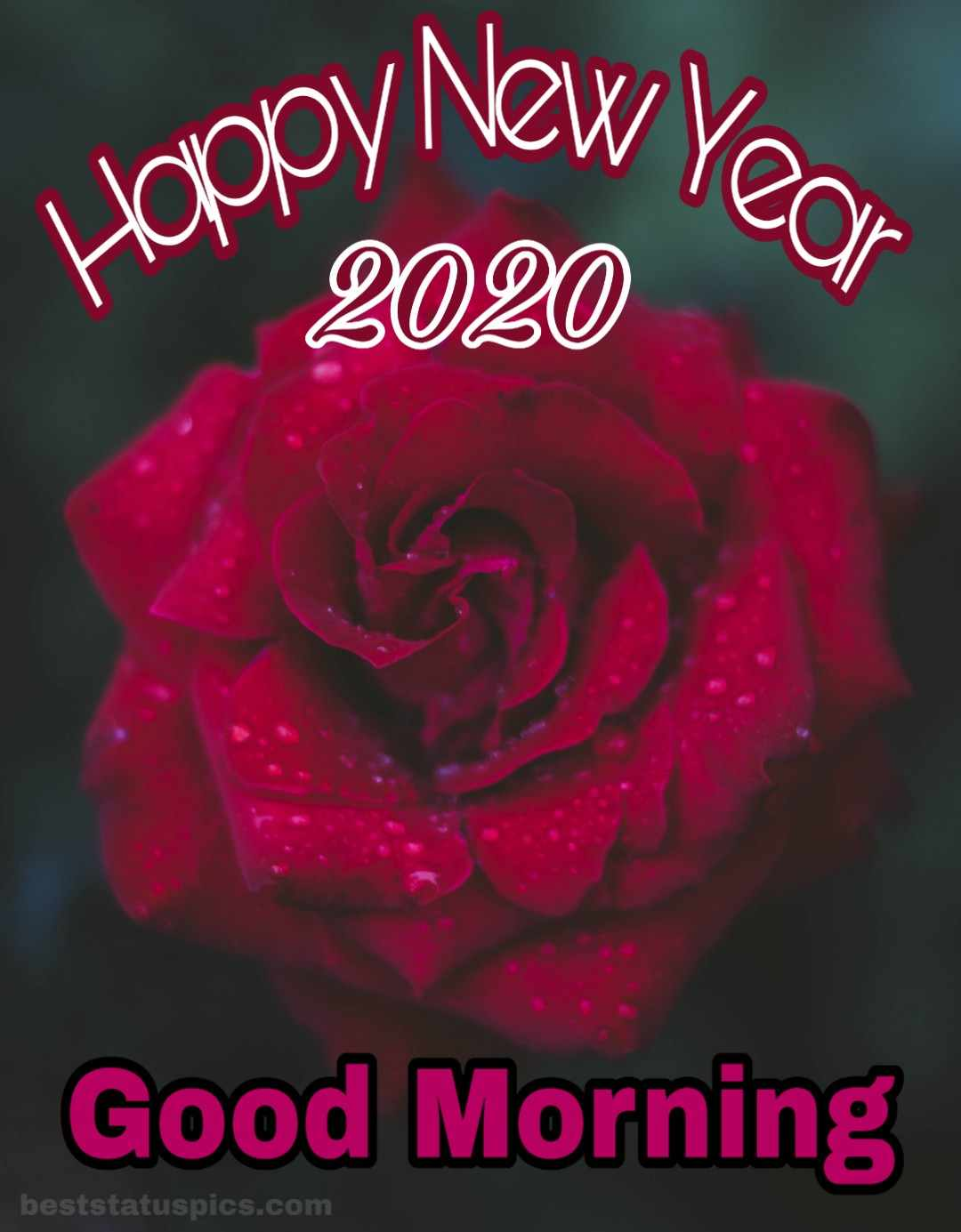 Good Morning Happy New Year 2020 Whatsapp Dp Status Images Best 1080x1385