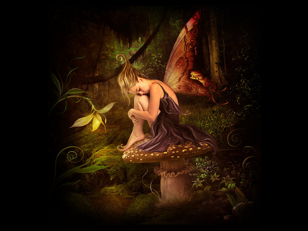 Night Fairy Wallpaper on this Fairy Background Wallpapers website 1024x768