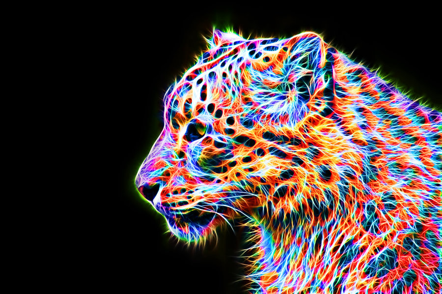 Colorful Leopard VIII by megaossa 900x598