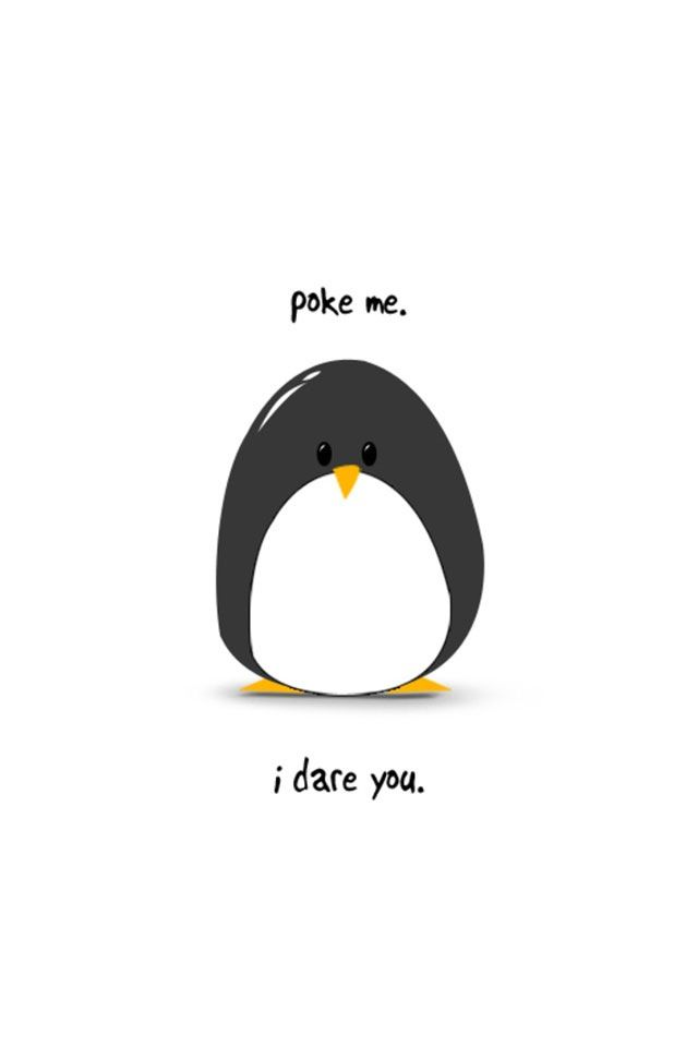 2 wordsfat penguin My fave quotes Funny wallpapers Penguin 640x960