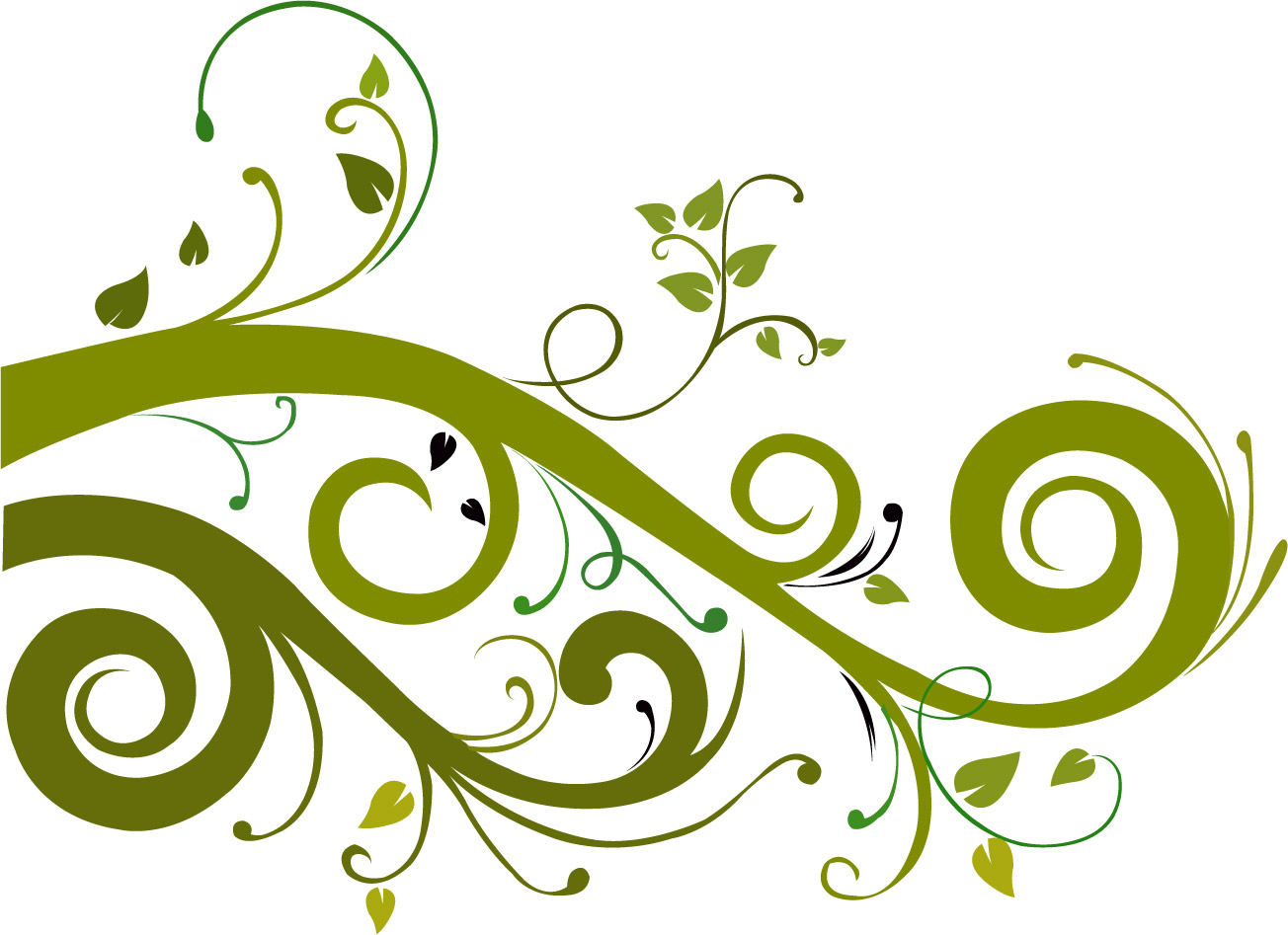 Flower Vector Graphic 7554 Hd Wallpapers in Vector n Designs 1304x947