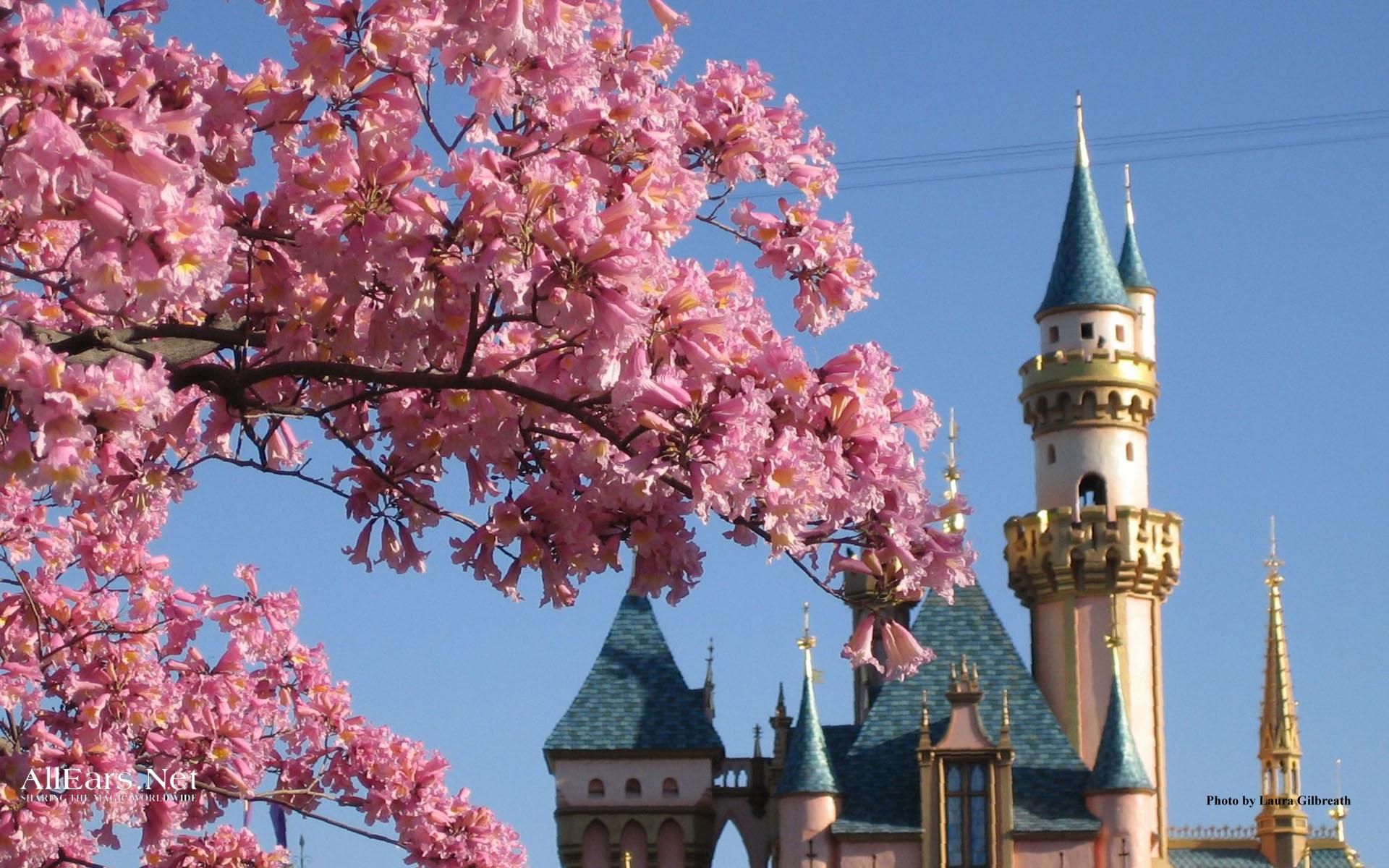 Disney Wallpaper Desktop