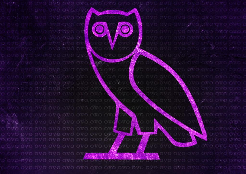 Drake Owl Wall 1024x728