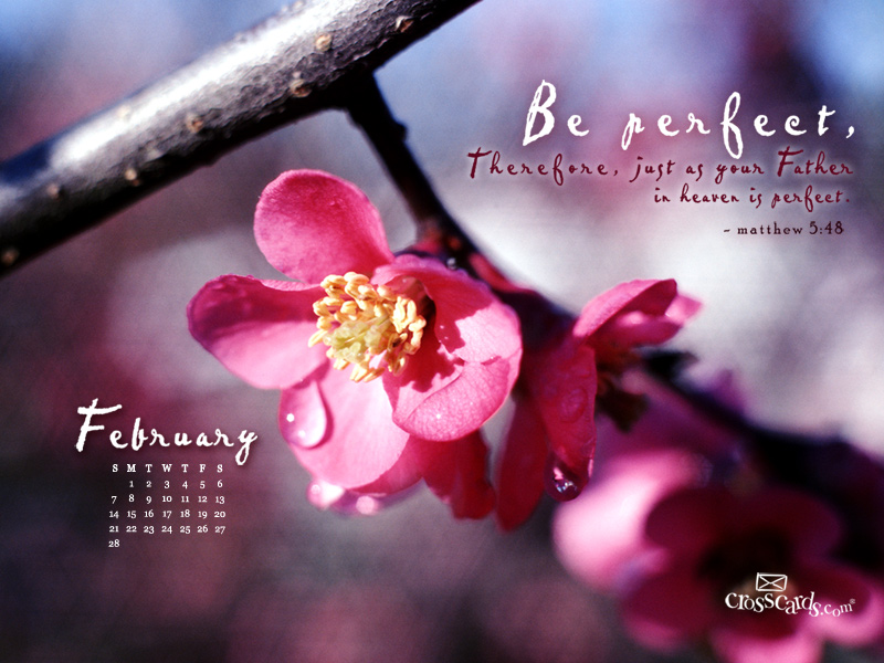february 2010 be perfect wallpaper download christian february 800x600