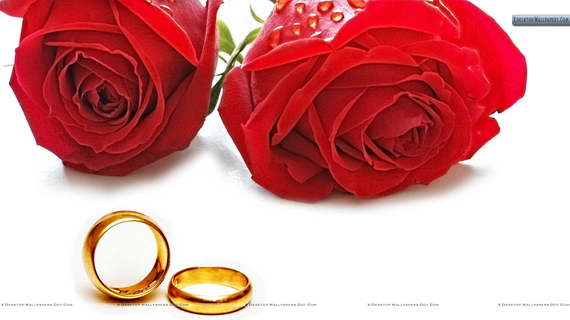 Image Result For Wedding Wishes New Couple