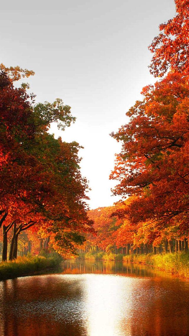 Autumn River Wallpaper   iPhone Wallpapers 640x1136