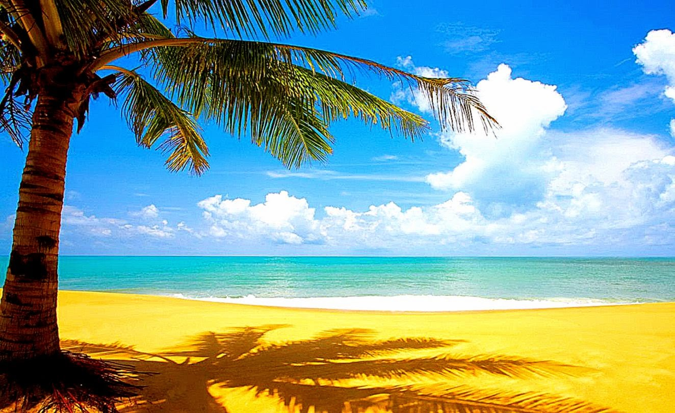 Summer Beach Desktop Backgrounds Desktop Wallpaper 1324x810