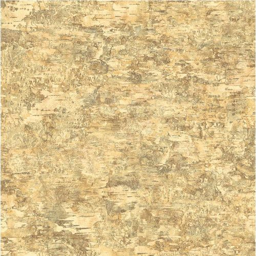 Lake Forest Lodge Birch Wallpaper York Wallcoverings Wallpaper Wall 500x500
