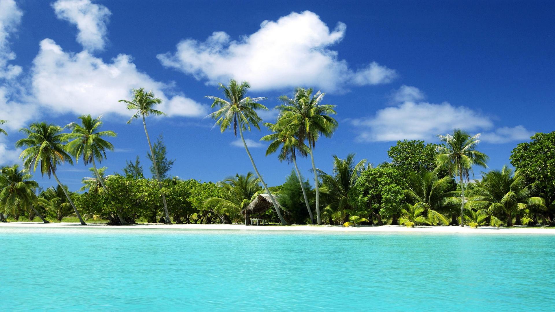Tropical Beach Hd Wallpaper: Tropical Desktop Wallpaper