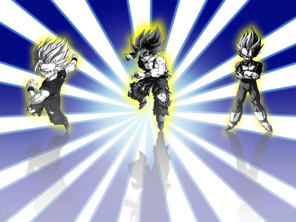 ssj Goku Vegeta and Gohan   Dragon Ball Z Wallpaper 21652367 1024x768