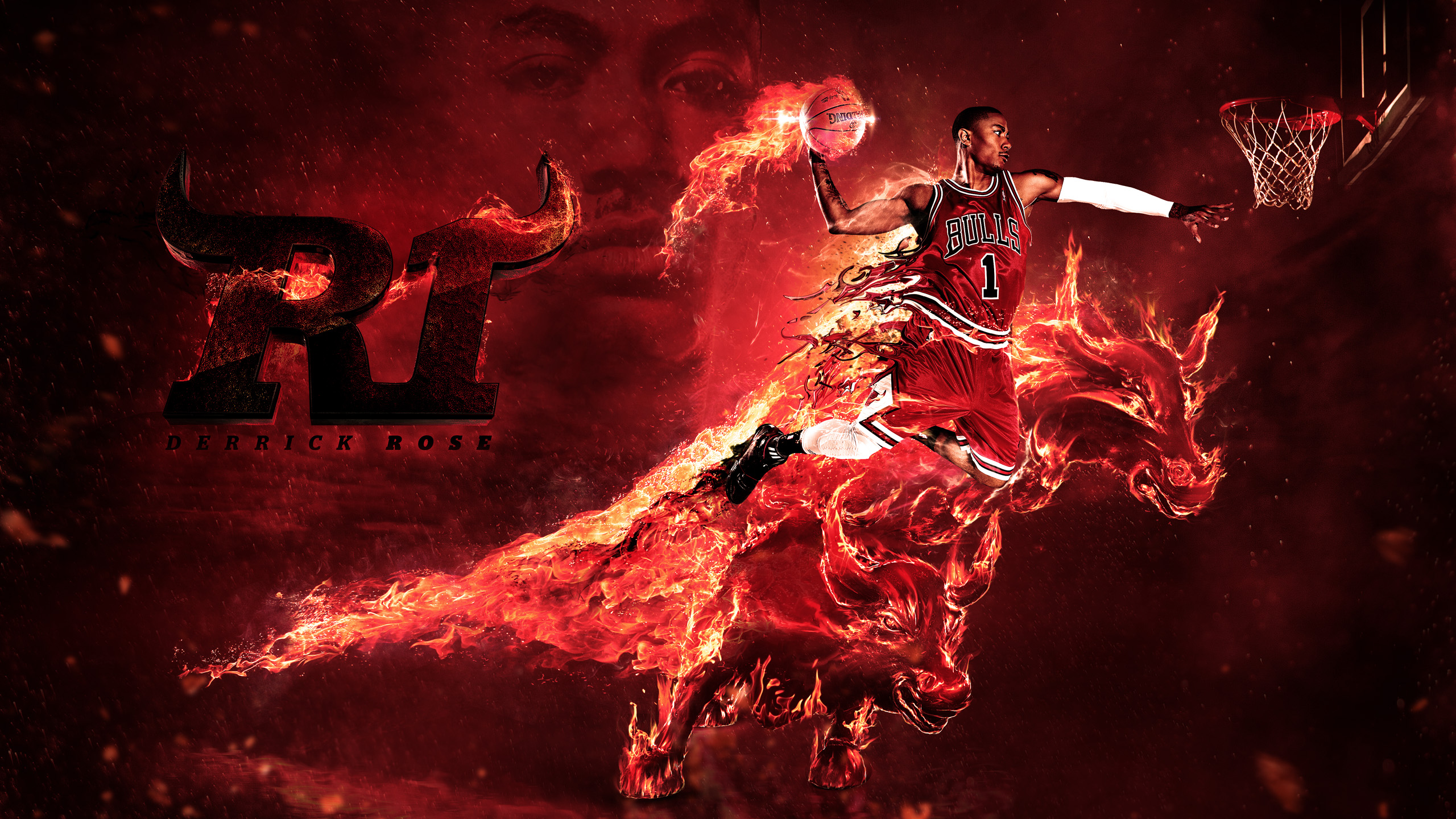 Derrick Rose Bulls High Resolution Wallpapers 2560x1440
