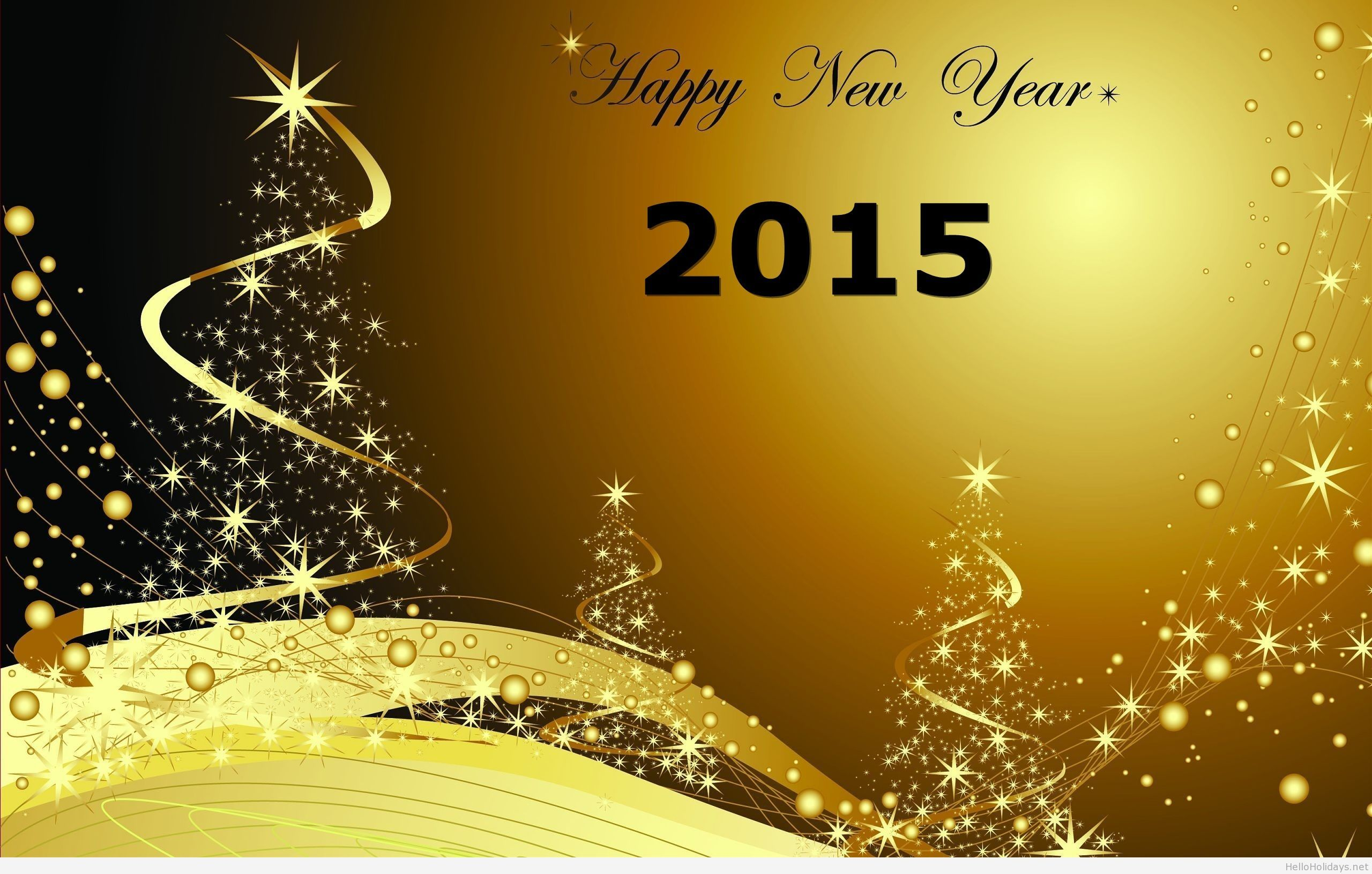 Happy New Year 2015 wallpaper image Life Happy new year 2017 2560x1631