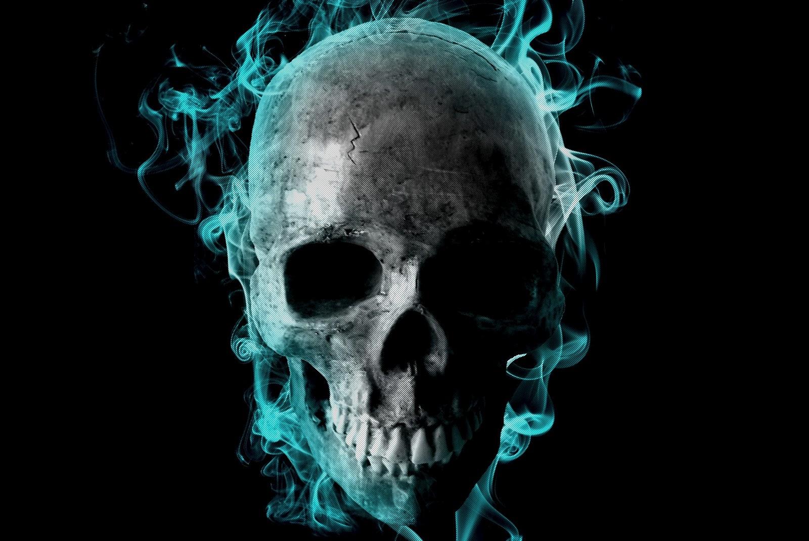 Beautiful HD Wallpapers Skull Wallpaper 1600x1071