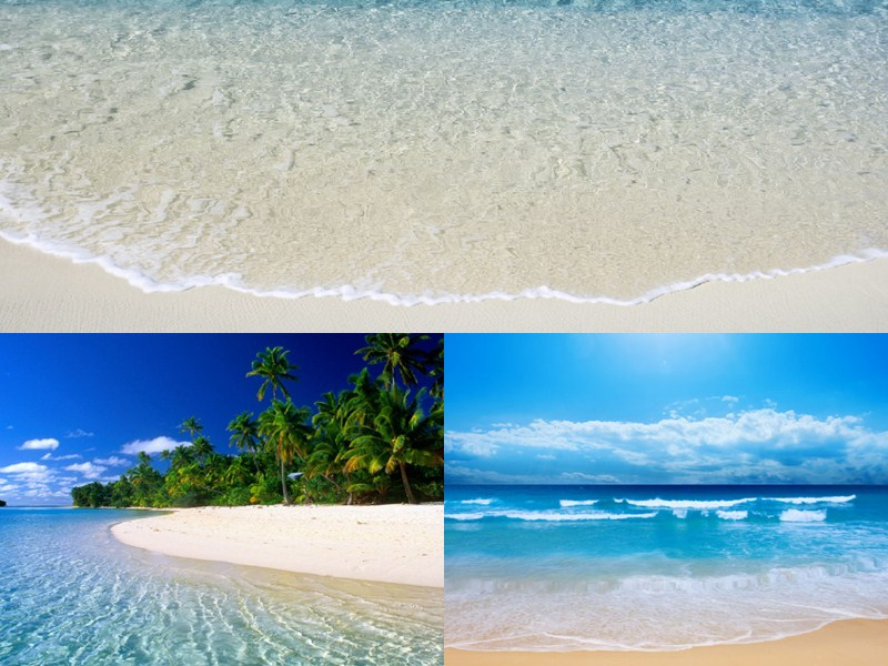10 Best Animated Beach Desktop Wallpapers for Summer 800x600
