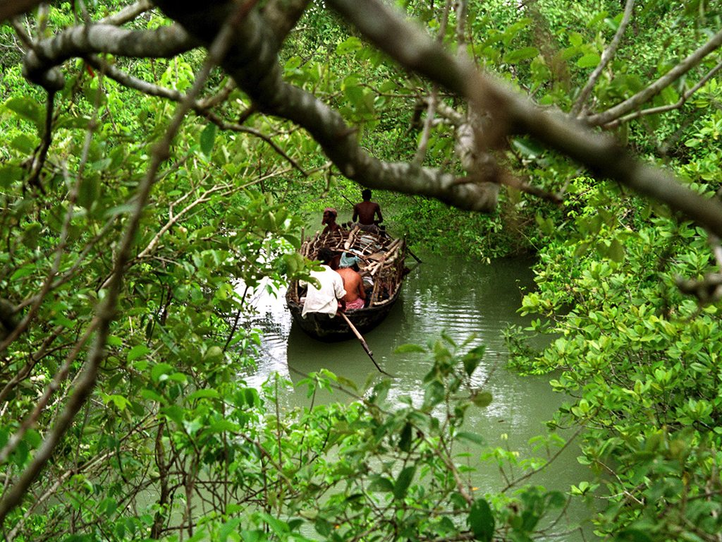 West Bengal Getaways for the Culture Nature and Ocean Lover Nat 1024x768