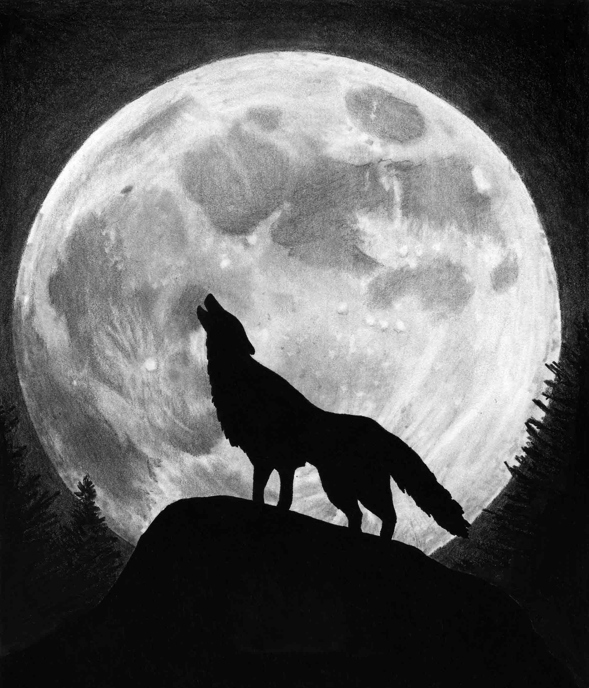 Wolf Iphone Wallpaper: Wolf And Moon Wallpaper
