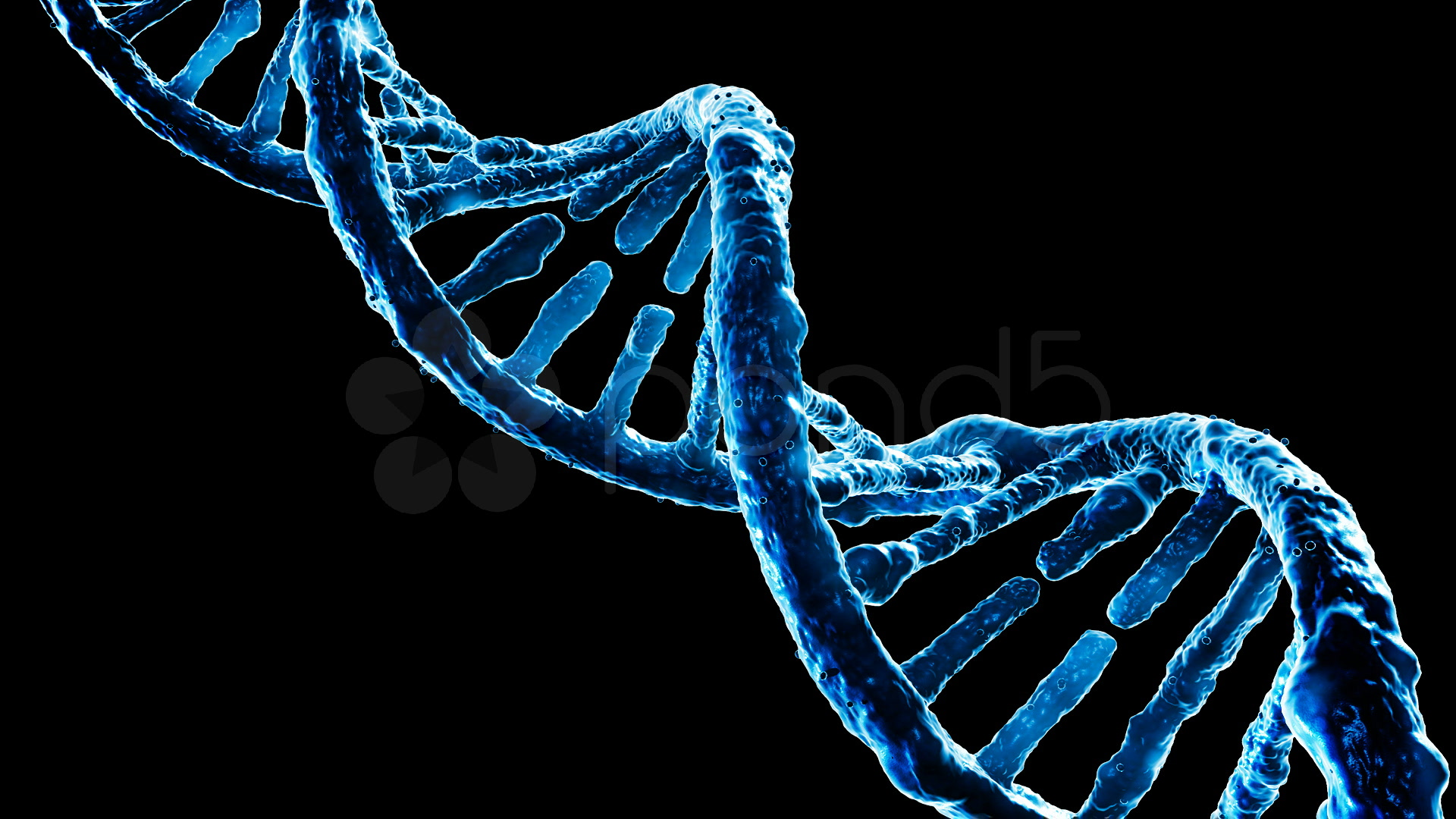 Blue Dna Strand Stock Video 517124 HD Stock Footage 1920x1080