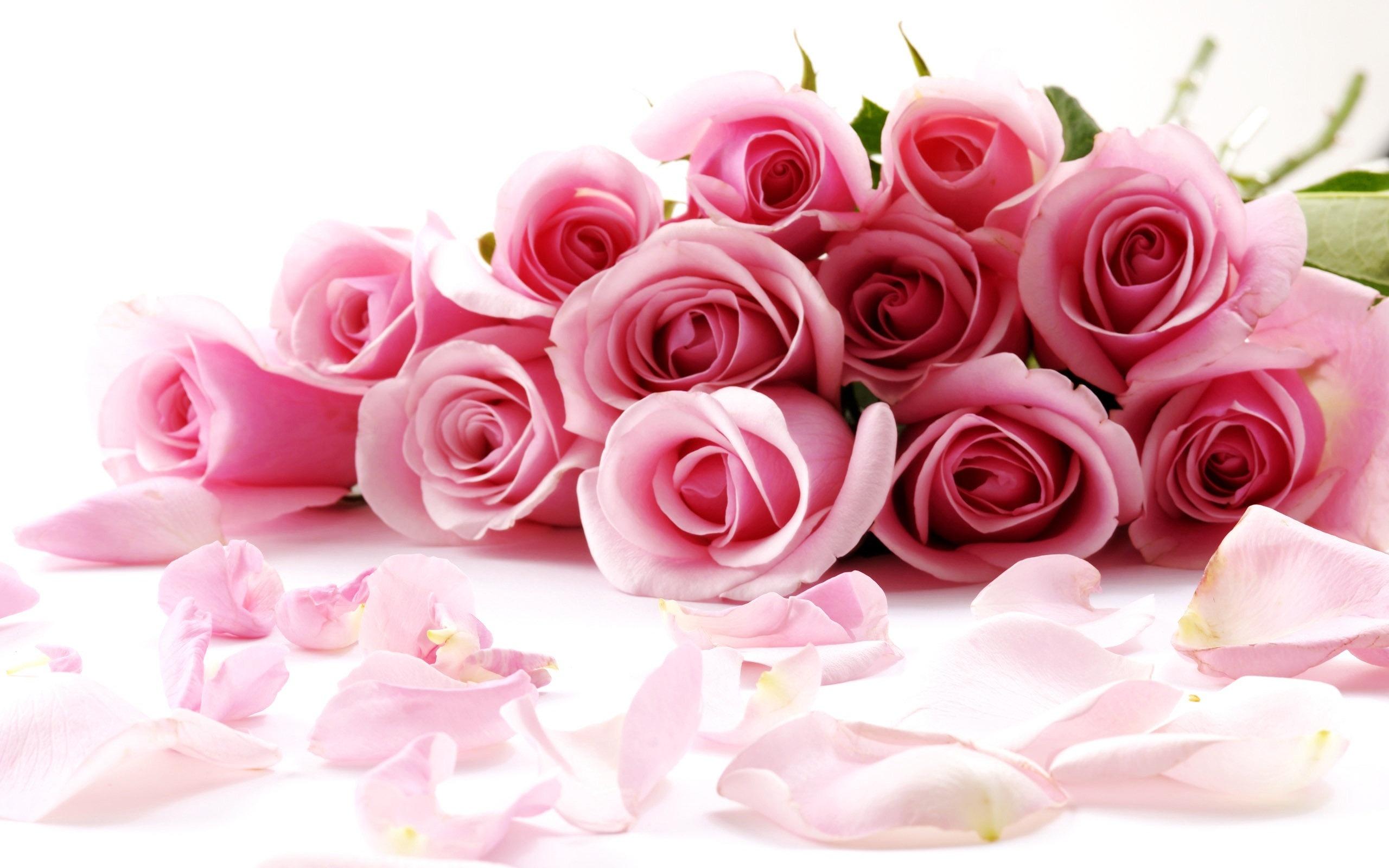 Pin Day Disney Valentine Wallpaper Valentines Roses 2560x1600