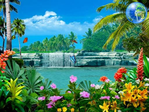 Screensaver Downloads 3D Tropical Fish Aquarium Screensaver 512x384