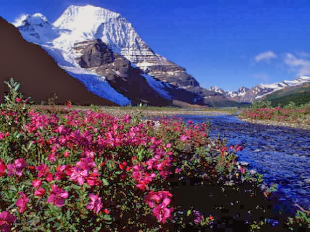 Himalayas hd wallpapers HD WALLPAPERS 640x480