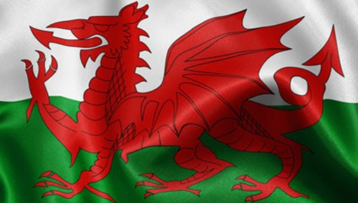 Welsh flag wallpaper wallpapersWelsh Flag Wallpaper 512x290