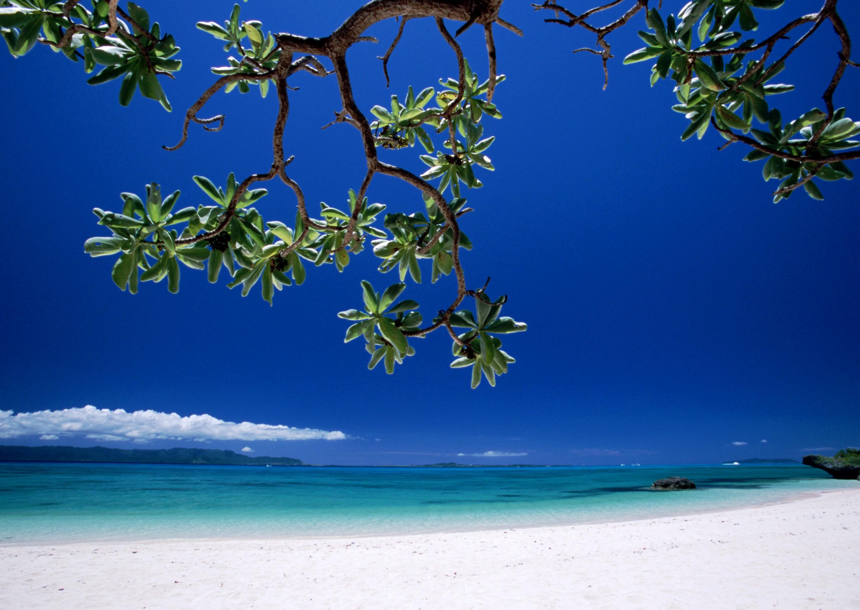 Working Space Desktop Wallpaper Beach Scenes Caribbean Beach 2950x2094