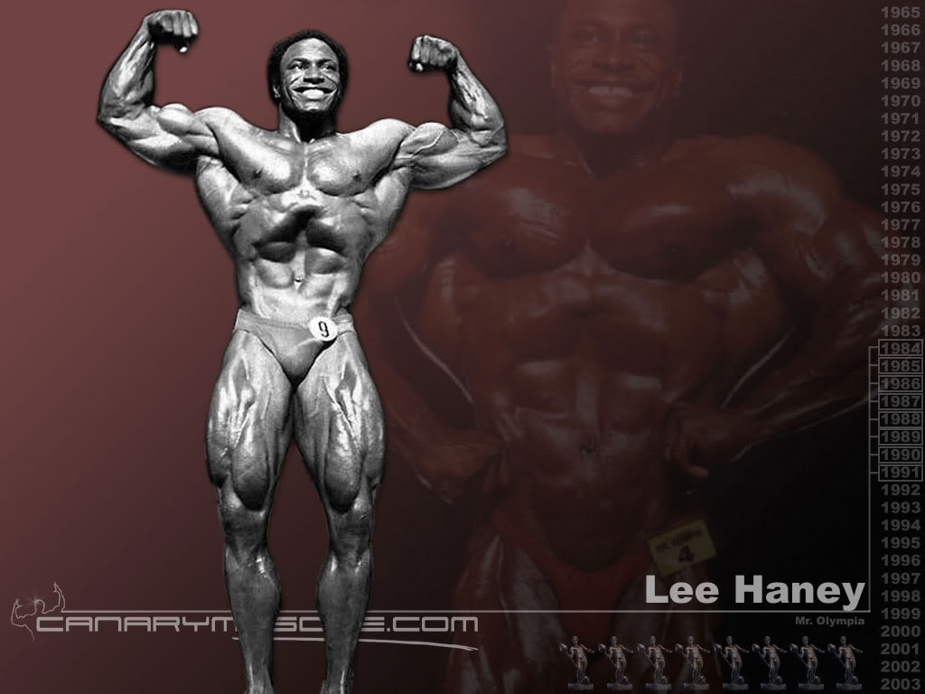 Wallpaper Mr Olympia 1024x768