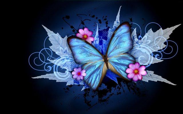 High resolution Blue butterfly desktoplaptop wallaper Listed in 640x400