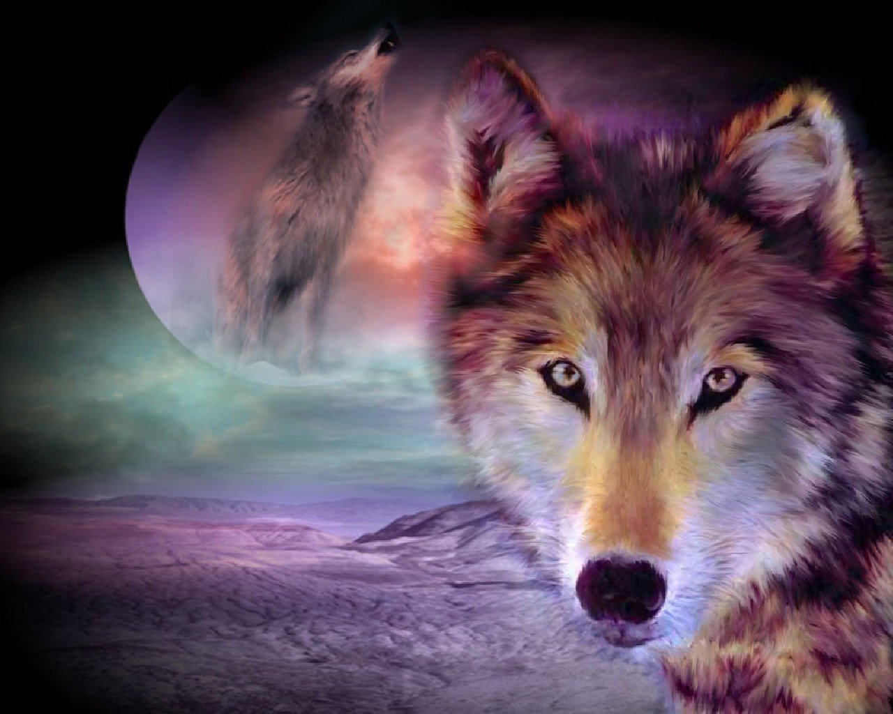 Wolf Wallpaper 10957 Hd Wallpapers in Animals   Imagesci 1280x1024