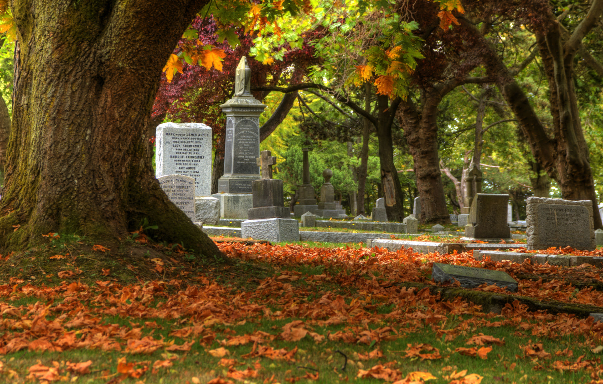 Cemetery grave headstone gothic trees leaves autumn fall wallpaper 1920x1221