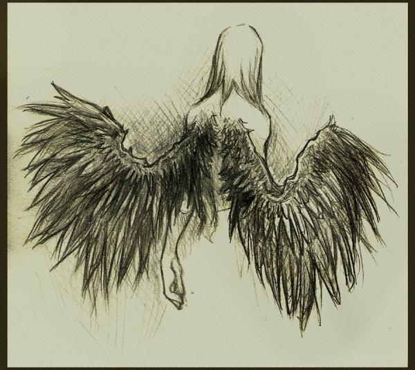 angel wings source http 3d pictures feedio net 1280x960 angel wings 600x534