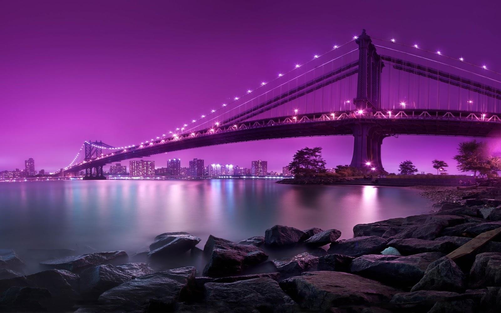 Purple HD Wallpapers 1600x1000